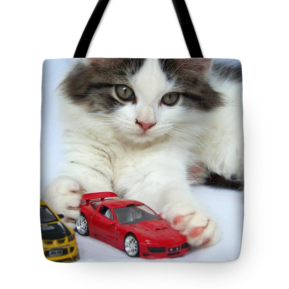 Kitten Tote Bag featuring the photograph My Toys by Jai Johnson