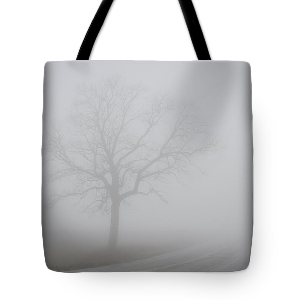 Landscape Tote Bag featuring the photograph Mystery Road by Steve L'Italien