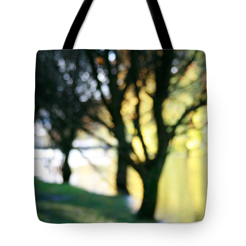 Fall Tote Bag featuring the photograph Mystic Fall by Masha Batkova