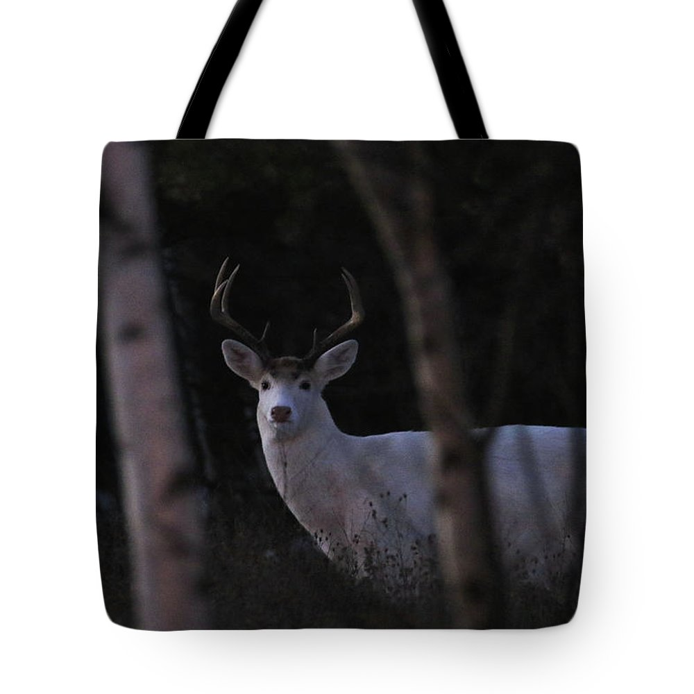 White Tote Bag featuring the photograph Mystical by Brook Burling