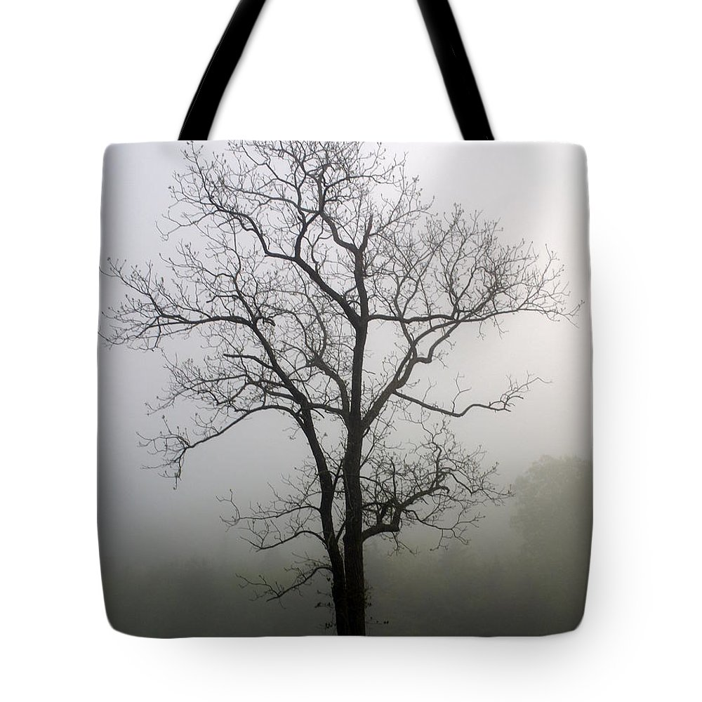 Tree Tote Bag featuring the photograph Mysty Tree 3 by Marty Koch