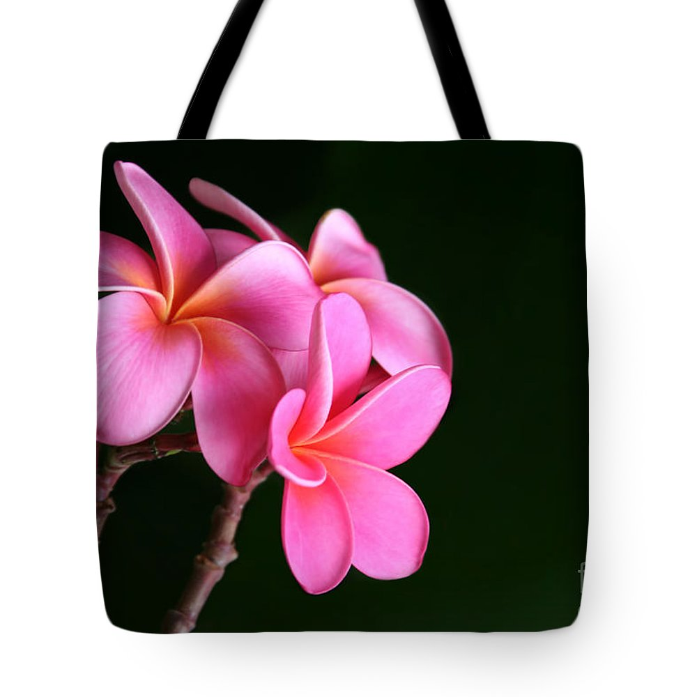 Pink Plumeria Tote Bag featuring the photograph Pink Plumeria by Sharon Mau