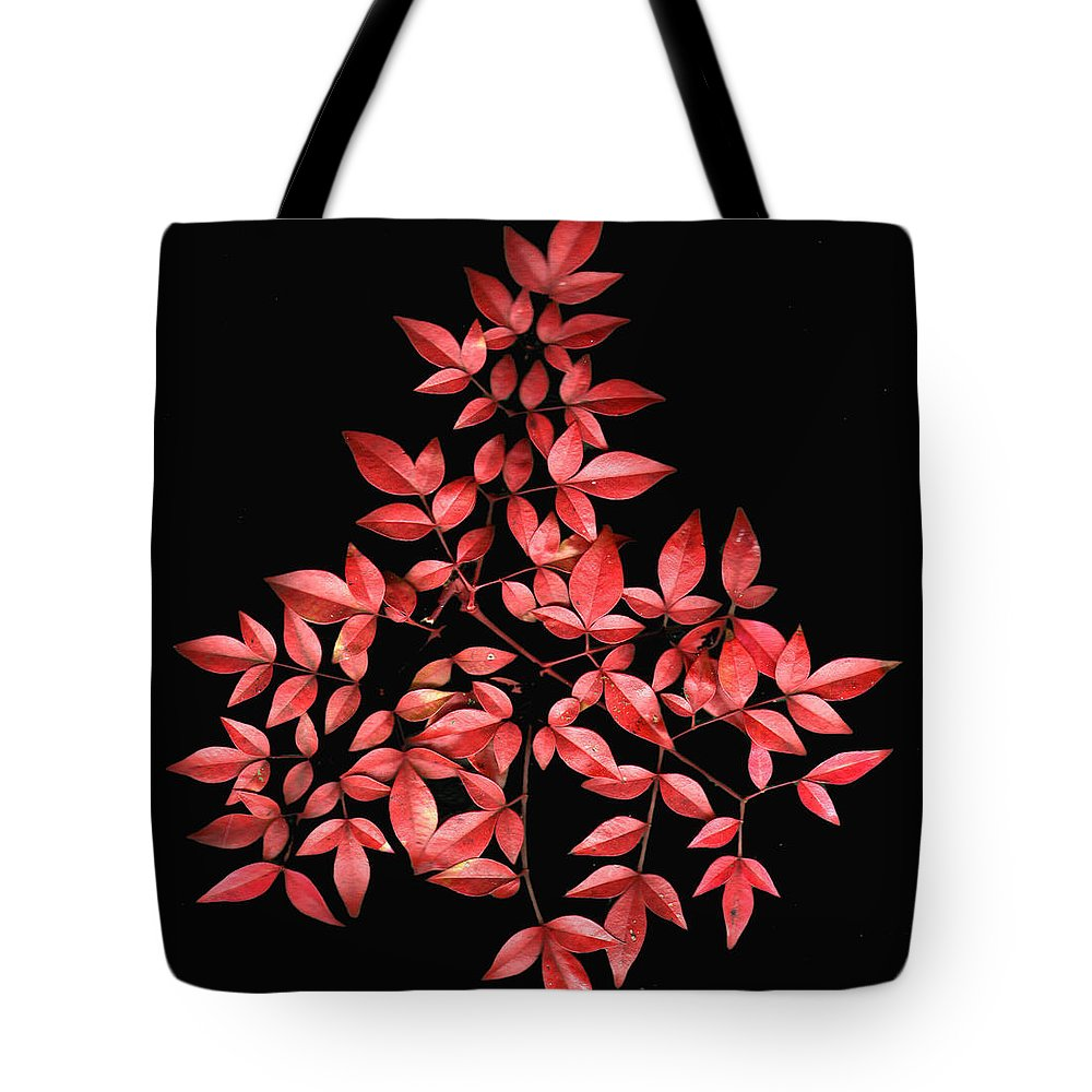 Leaves Tote Bag featuring the photograph Nadina Branch by Wayne Potrafka