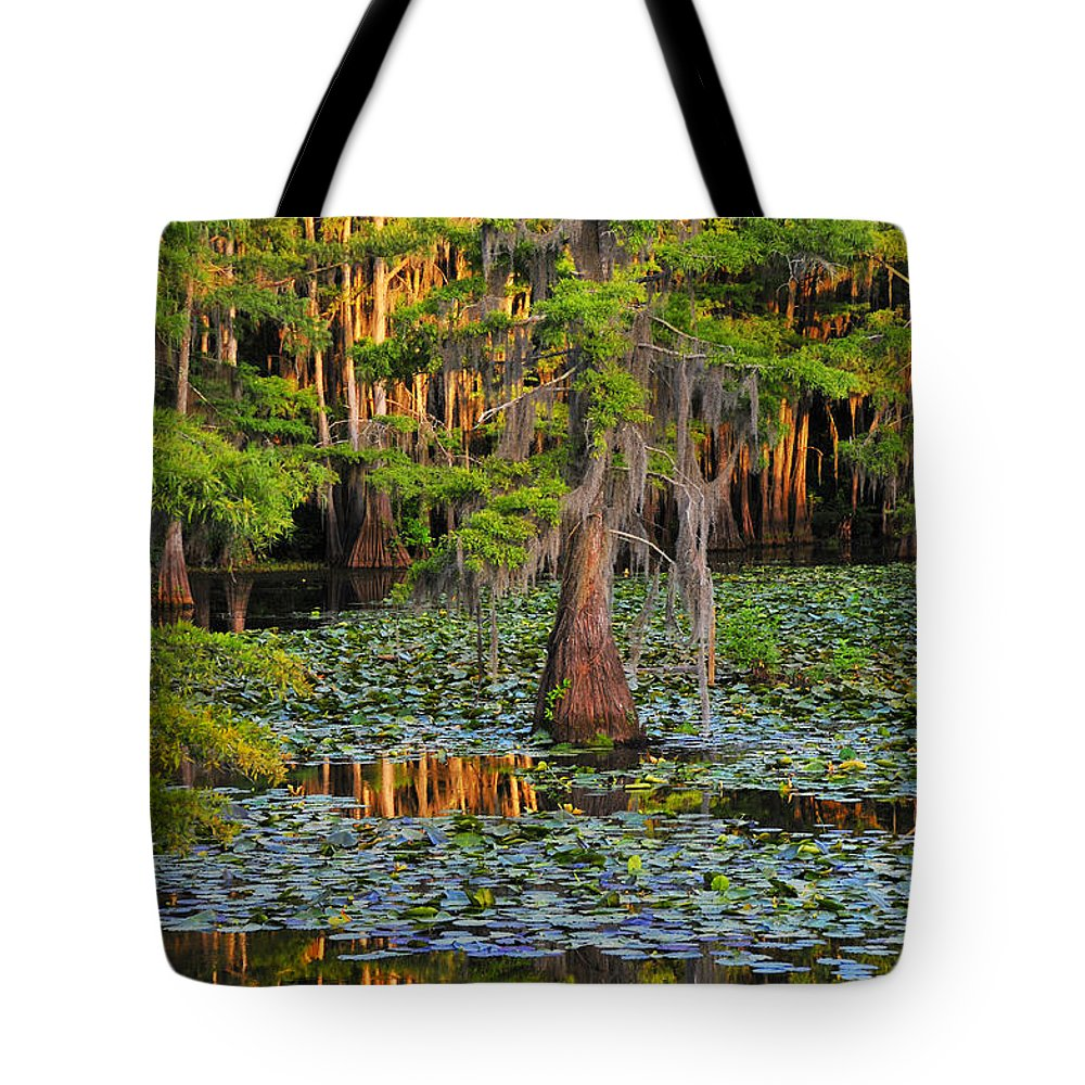 Bog Tote Bag featuring the photograph Naked by Skip Hunt