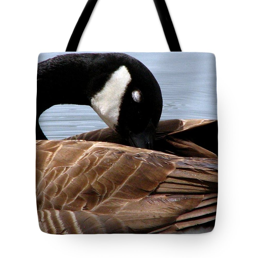 Geese Tote Bag featuring the photograph Nap Time 2 by J M Farris Photography