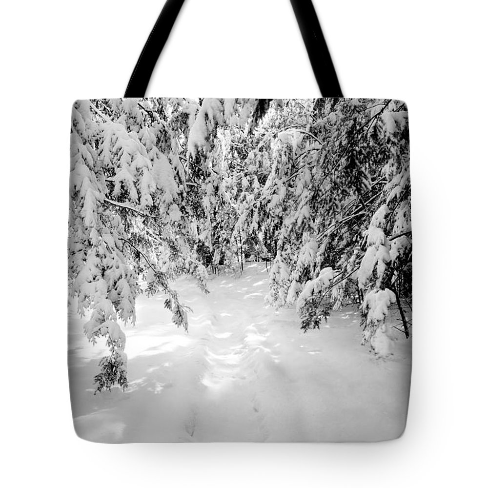 Merrimack Tote Bag featuring the photograph Narniaesque by Greg Fortier