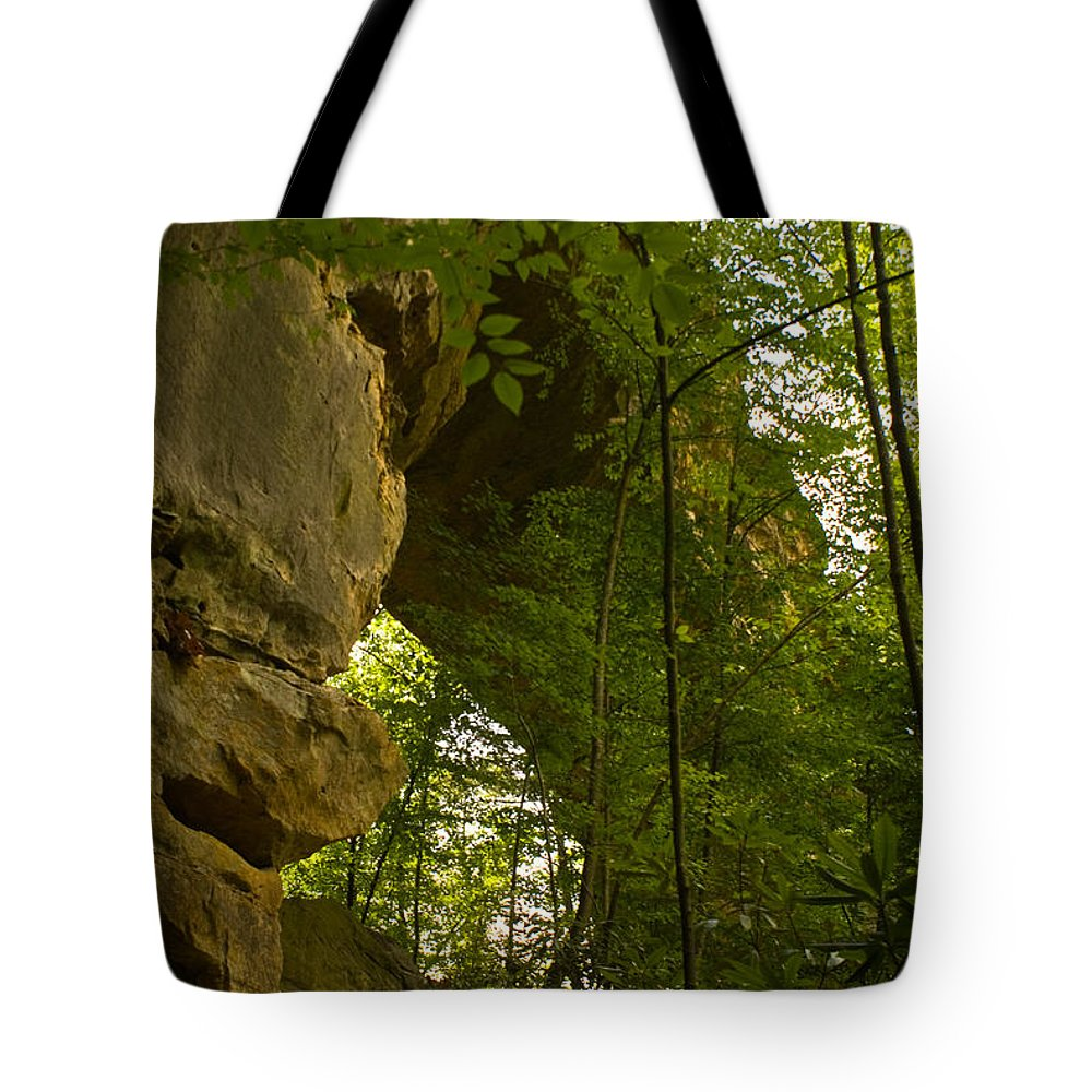Natural Arch Tote Bag featuring the photograph Natural Arch by Douglas Barnett