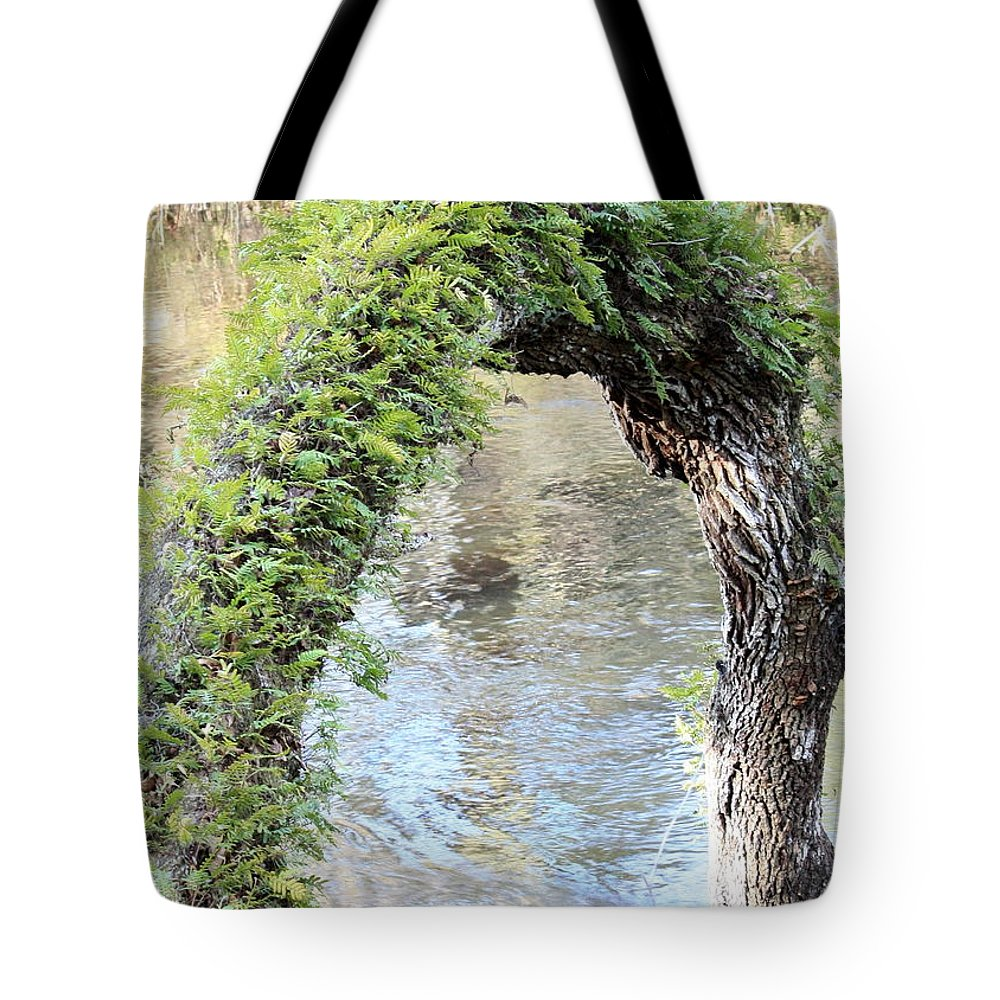 Florida Landscape Tote Bag featuring the photograph Natural Archway Over Hillsborough River by Carol Groenen