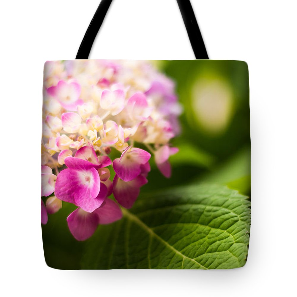 Hydrangea Tote Bag featuring the photograph Natural Beauty by Parker Cunningham