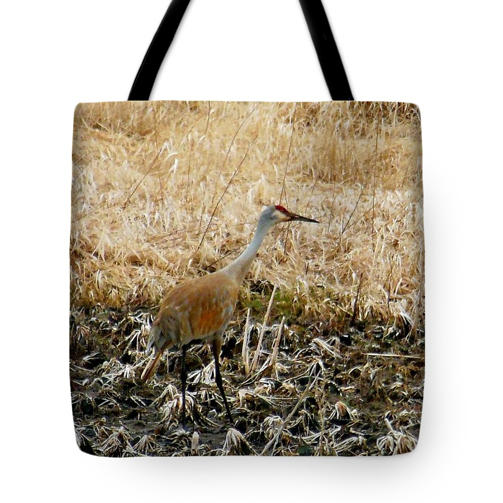 Sand Hill Crane Tote Bag featuring the photograph Natural Camouflage by Wild Thing