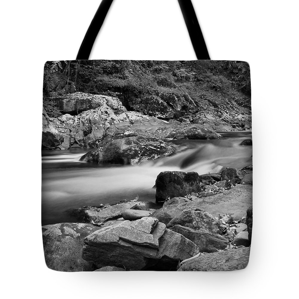 Natural Contrast Black And White Tote Bag featuring the photograph Natural Contrast Black And White by Dan Sproul