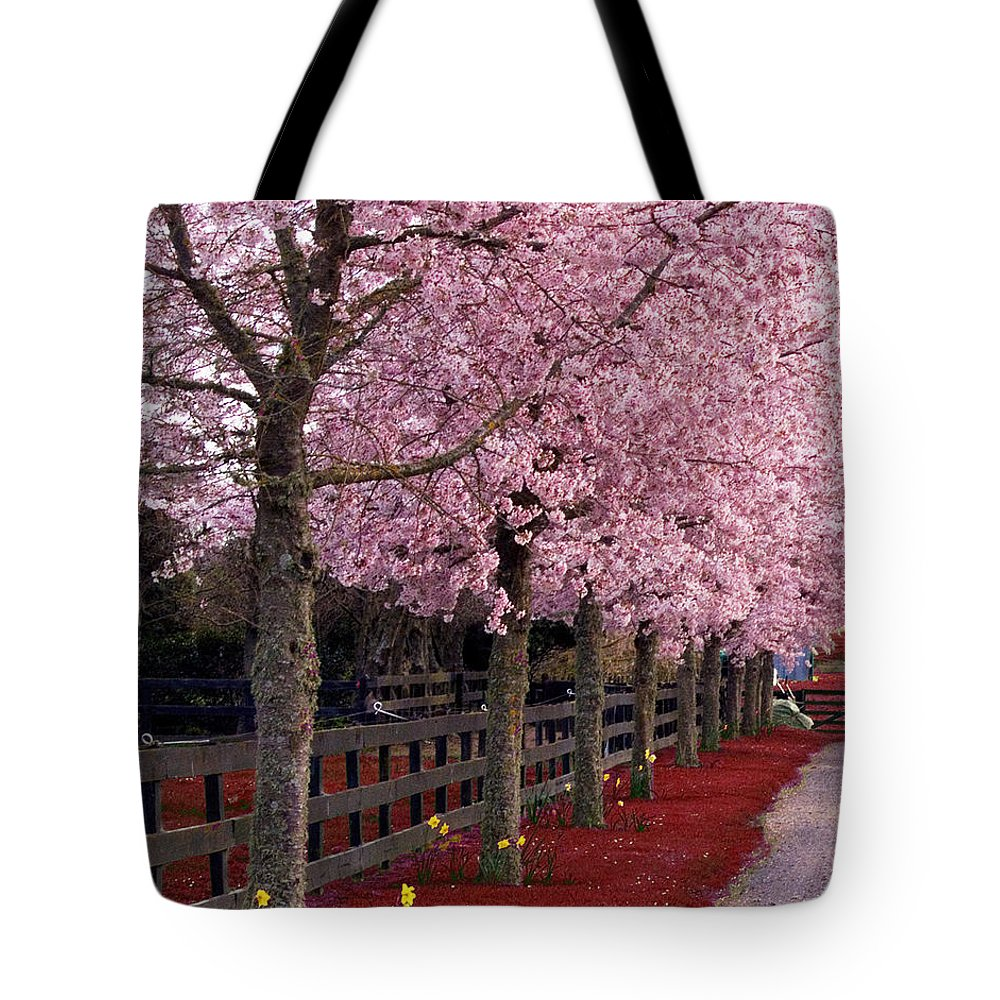 Pink Tote Bag featuring the photograph Nature - Pink Trees by Munir Alawi