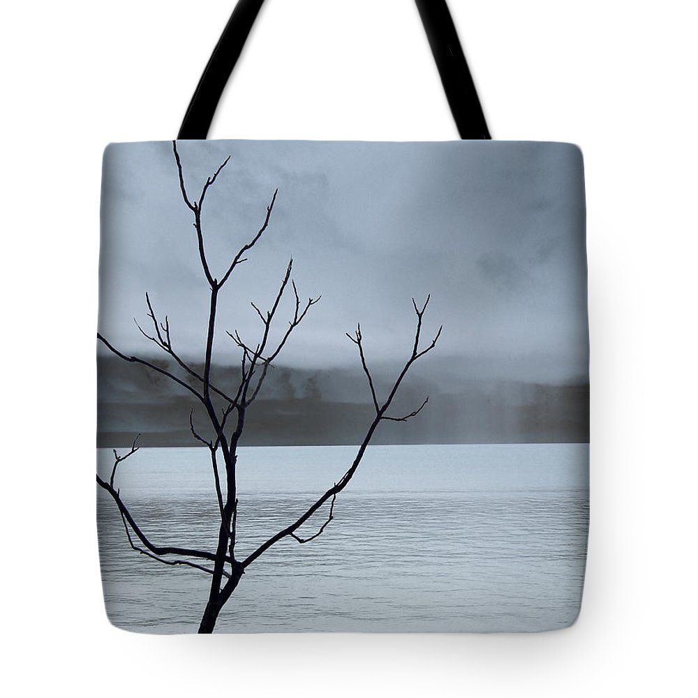 Nature Tote Bag featuring the photograph Nature - The Naked Tree by Munir Alawi