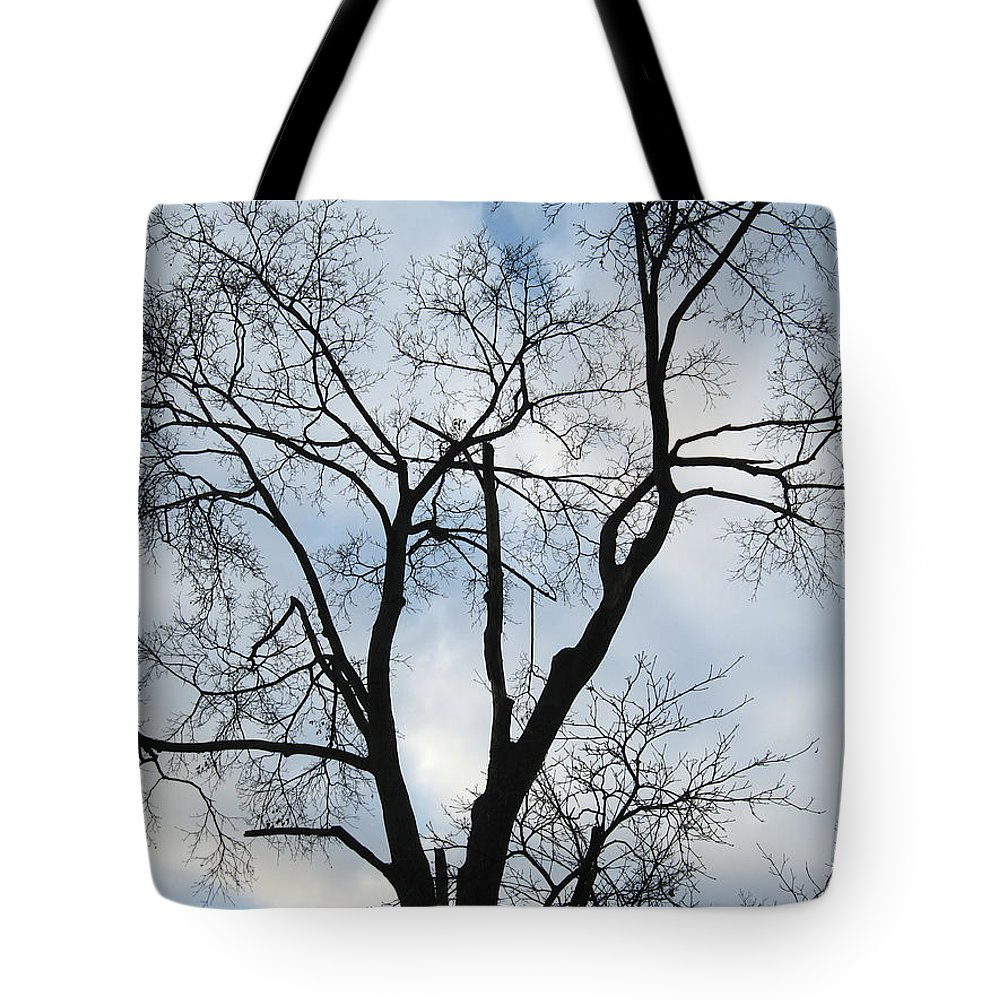 Nature Tote Bag featuring the photograph Nature - Tree in Toronto by Munir Alawi