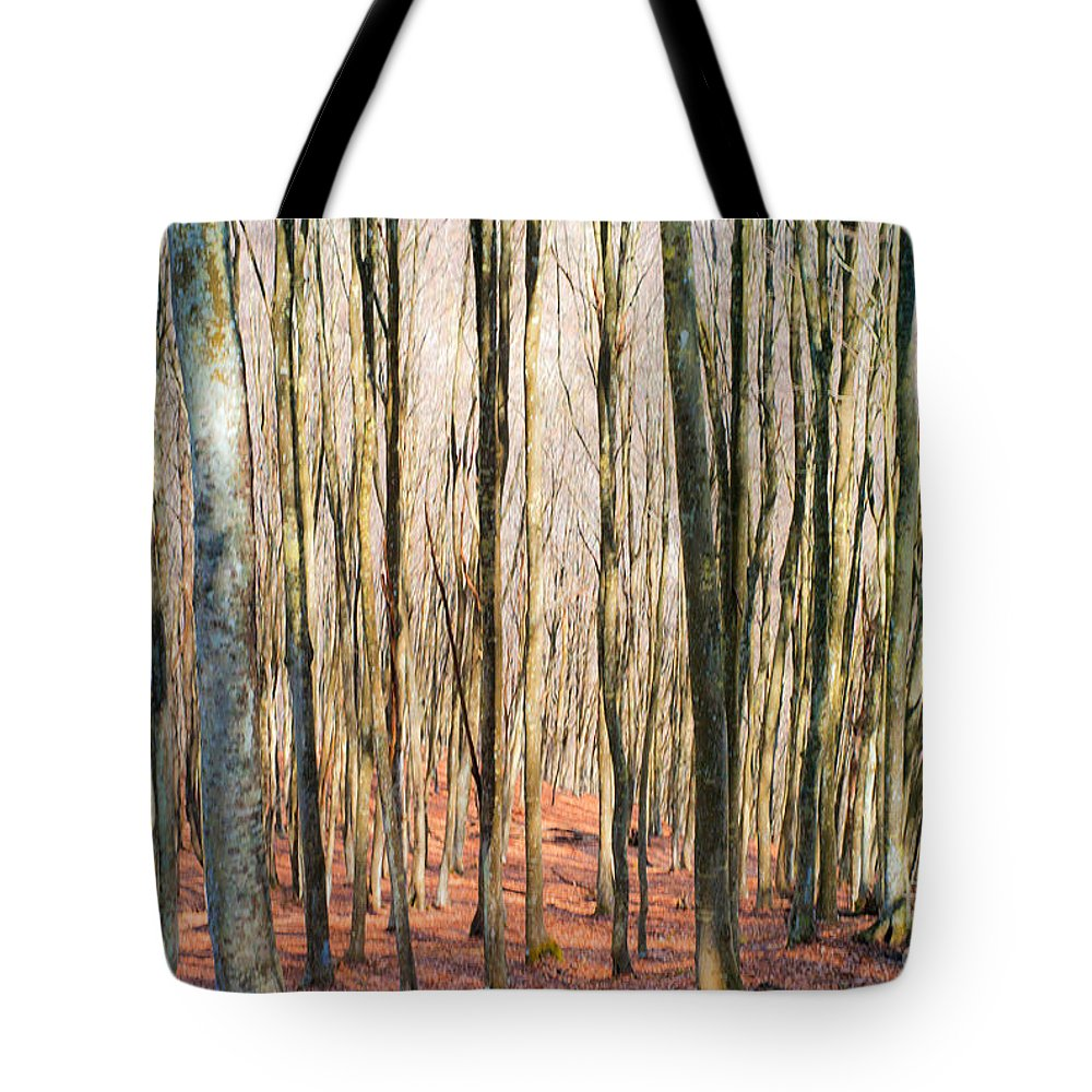 Outdoors Tote Bag featuring the painting Nature 11 by Romeo Lombardi