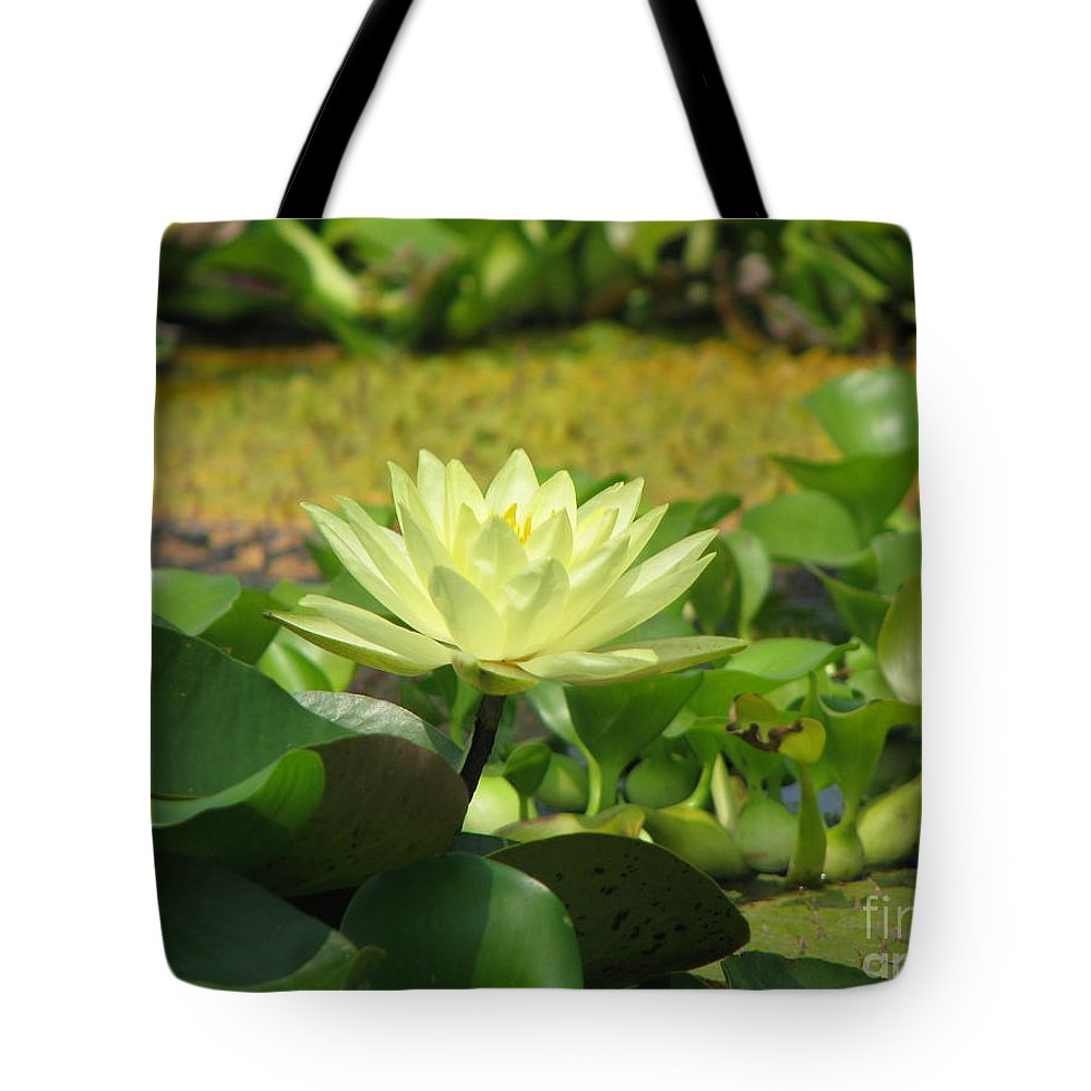 Nature Tote Bag featuring the photograph Nature by Amanda Barcon