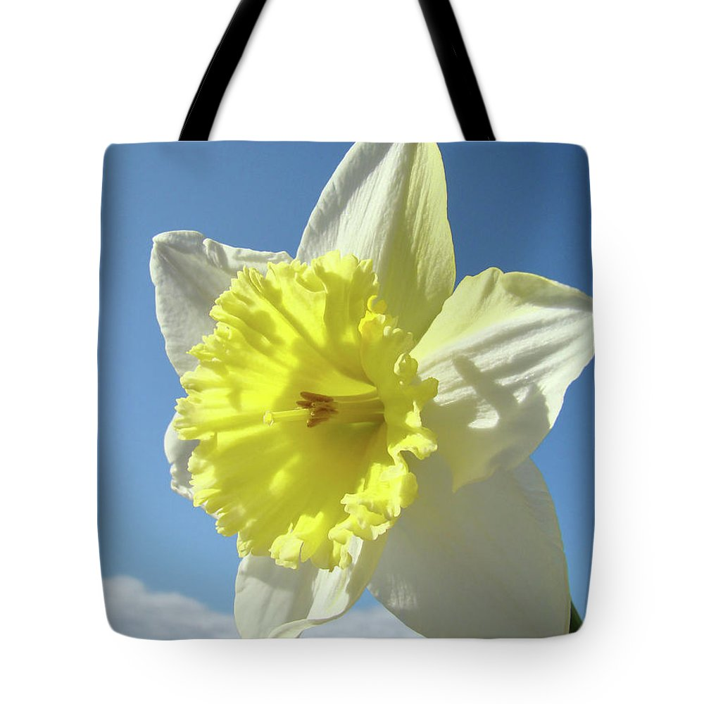 �daffodils Artwork� Tote Bag featuring the photograph Nature Daffodil Flowers Art Prints Spring Nature Art by Baslee Troutman