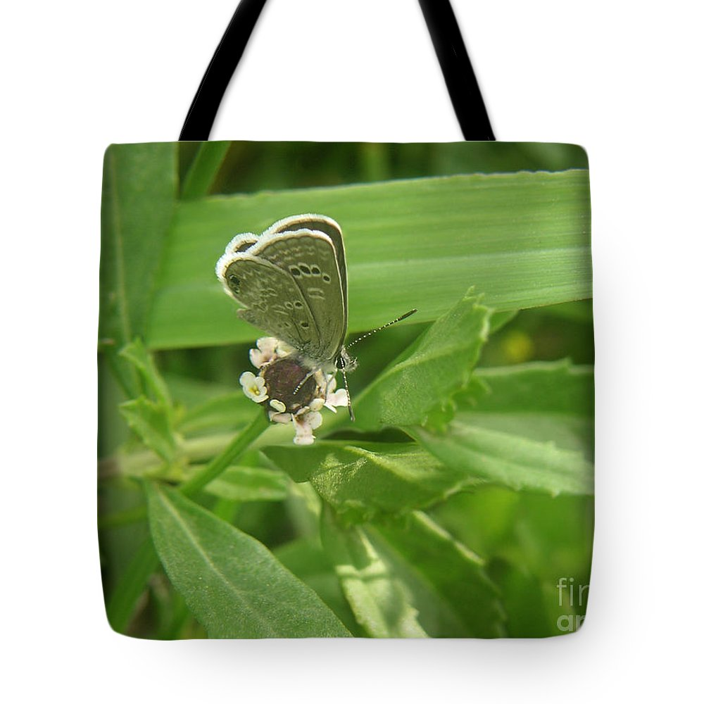 Nature Tote Bag featuring the photograph Nature In The Wild - A Floral Perch by Lucyna A M Green