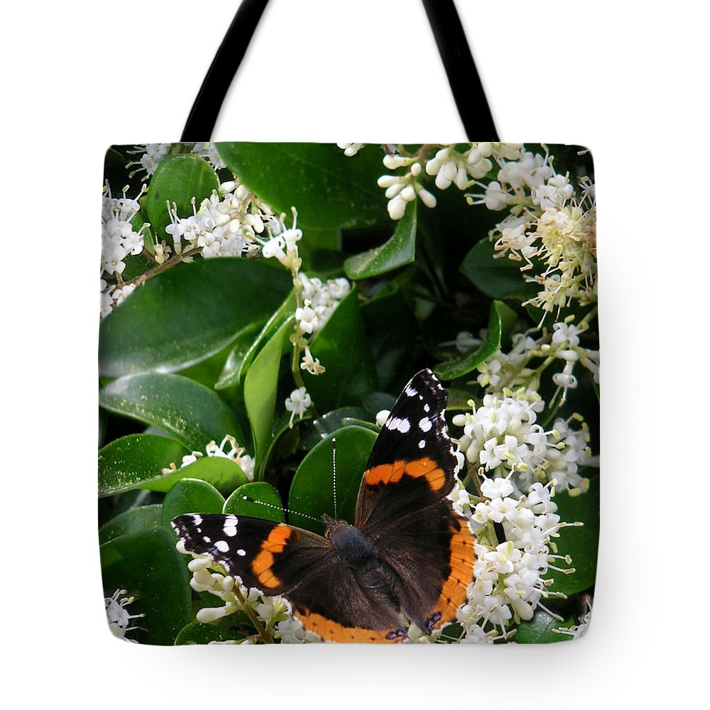Nature Tote Bag featuring the photograph Nature In The Wild - A Sweet Stop by Lucyna A M Green