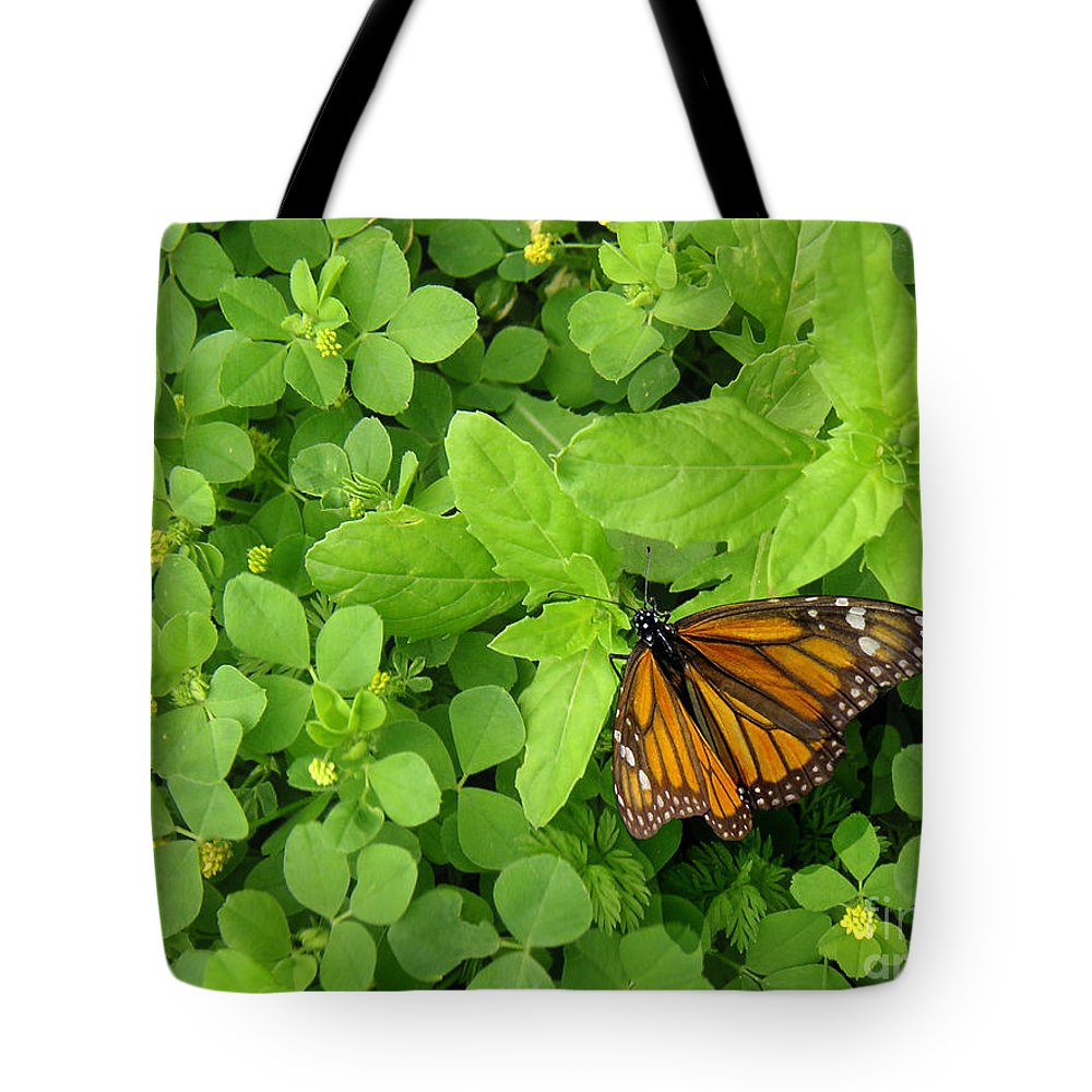 Nature Tote Bag featuring the photograph Nature In The Wild - Beautiful Solitude by Lucyna A M Green
