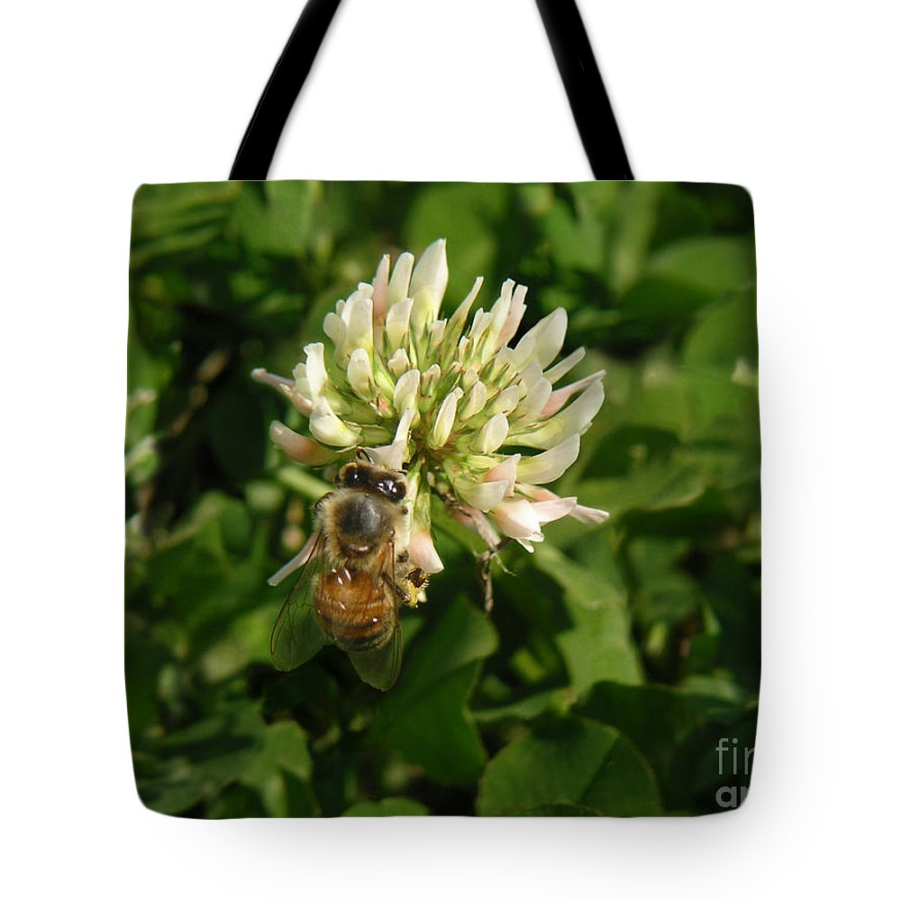 Nature Tote Bag featuring the photograph Nature In The Wild - Clover Honey by Lucyna A M Green