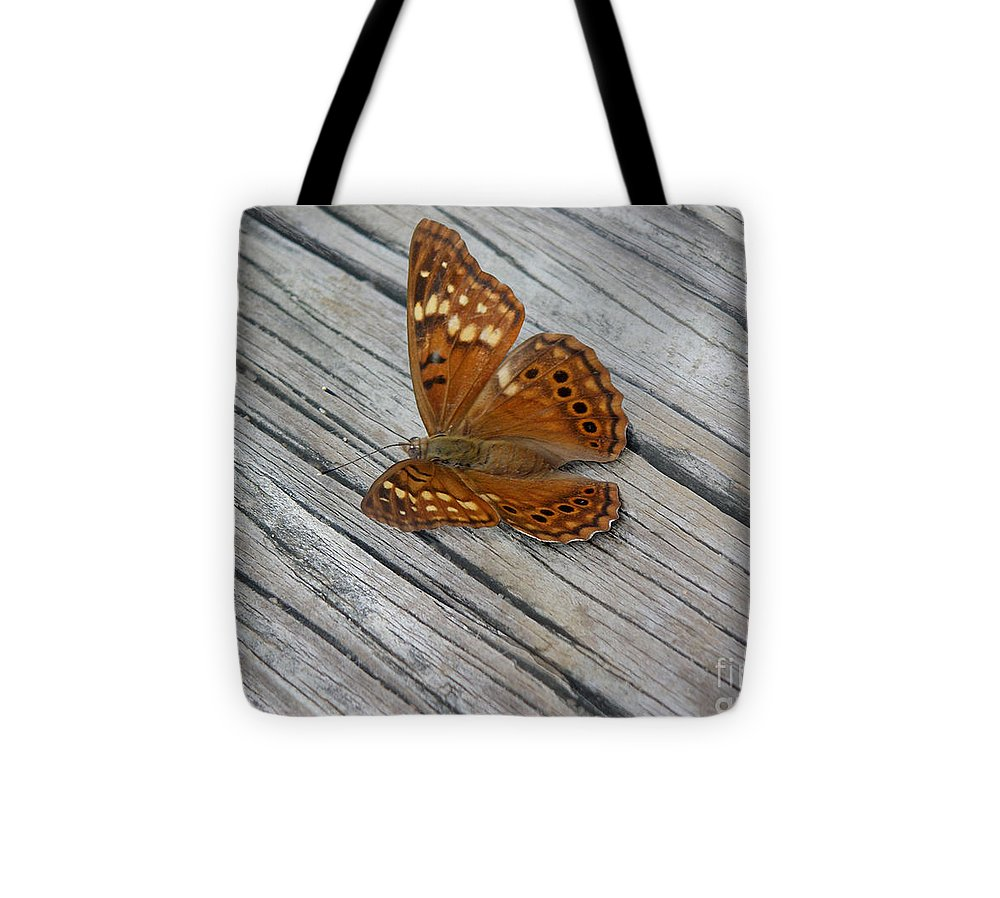 Nature Tote Bag featuring the photograph Nature In The Wild - Fall Colors by Lucyna A M Green
