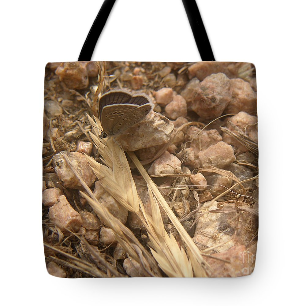 Nature Tote Bag featuring the photograph Nature In The Wild - Just Blending In by Lucyna A M Green