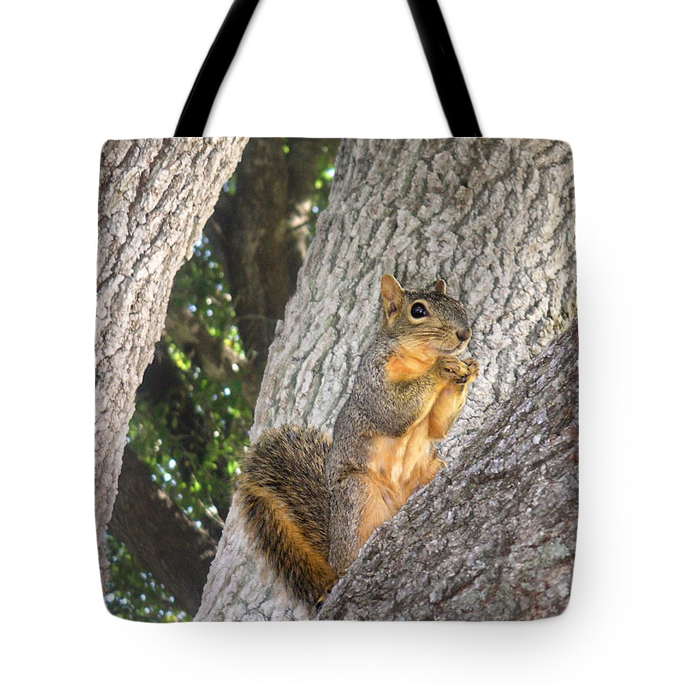 Nature Tote Bag featuring the photograph Nature In The Wild - Keeping Watch by Lucyna A M Green