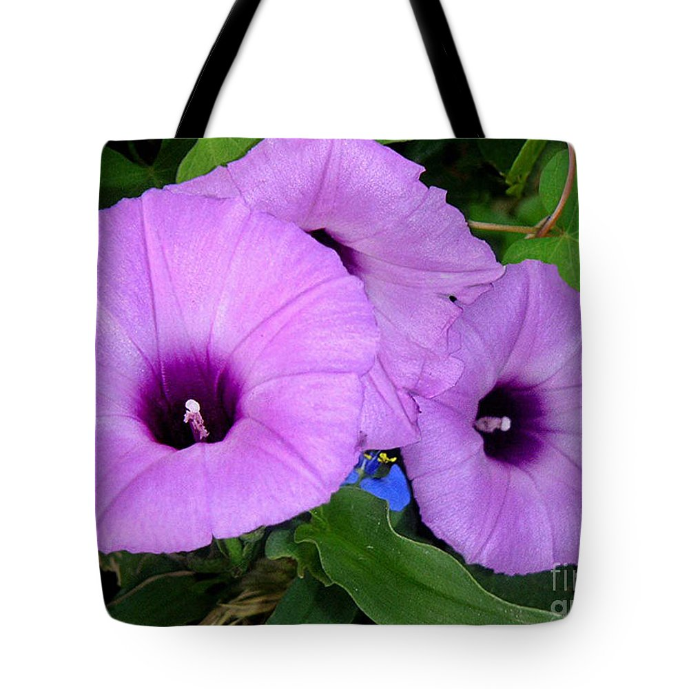 Nature Tote Bag featuring the photograph Nature In The Wild - Morning Bells by Lucyna A M Green