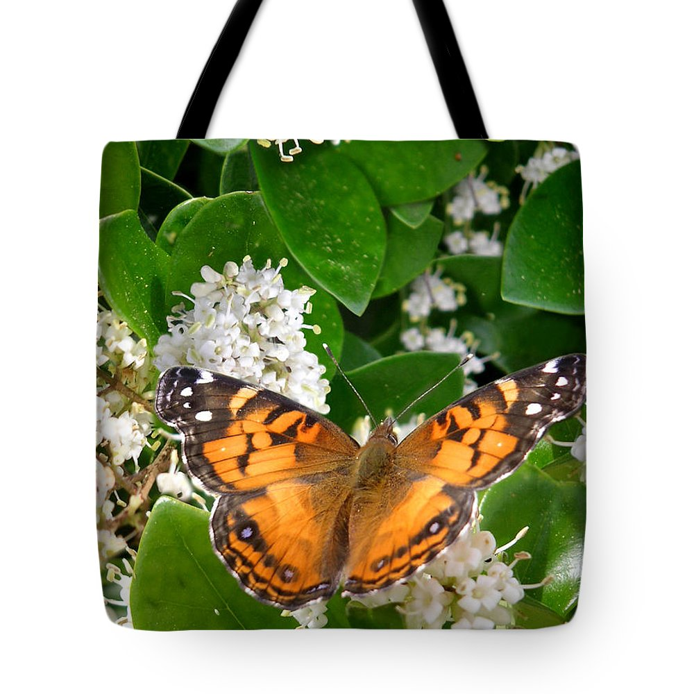Nature Tote Bag featuring the photograph Nature In The Wild - On Golden Wings by Lucyna A M Green