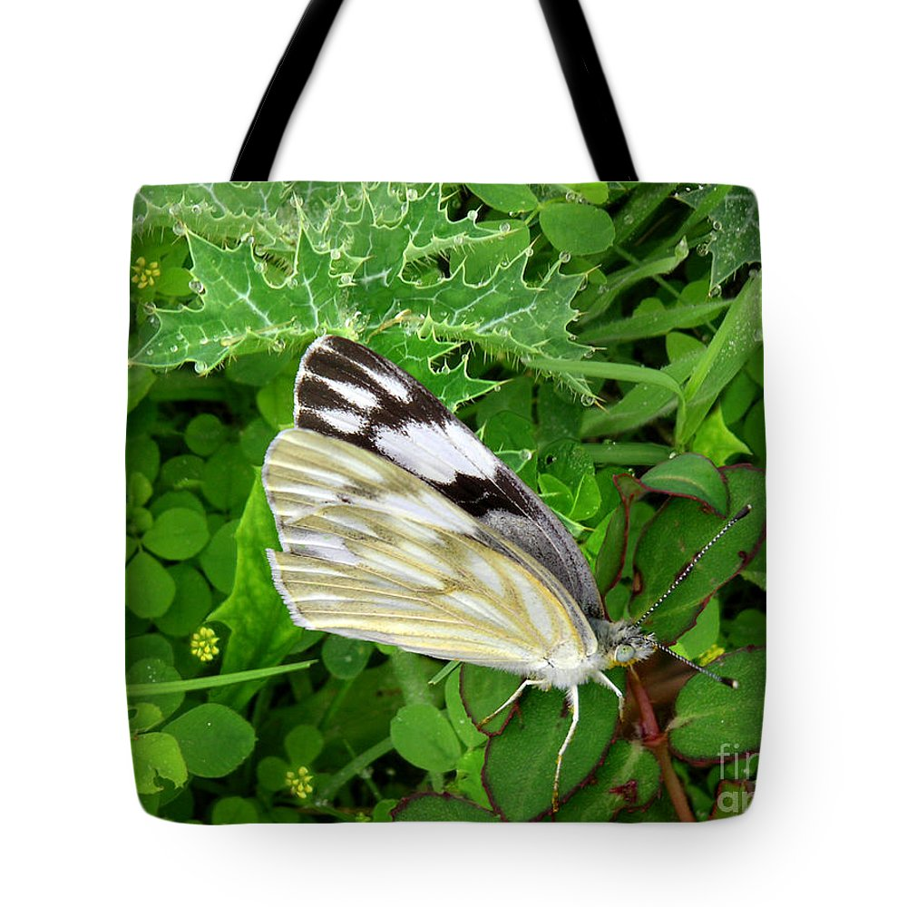 Nature Tote Bag featuring the photograph Nature In The Wild - Visiting With The Greens by Lucyna A M Green