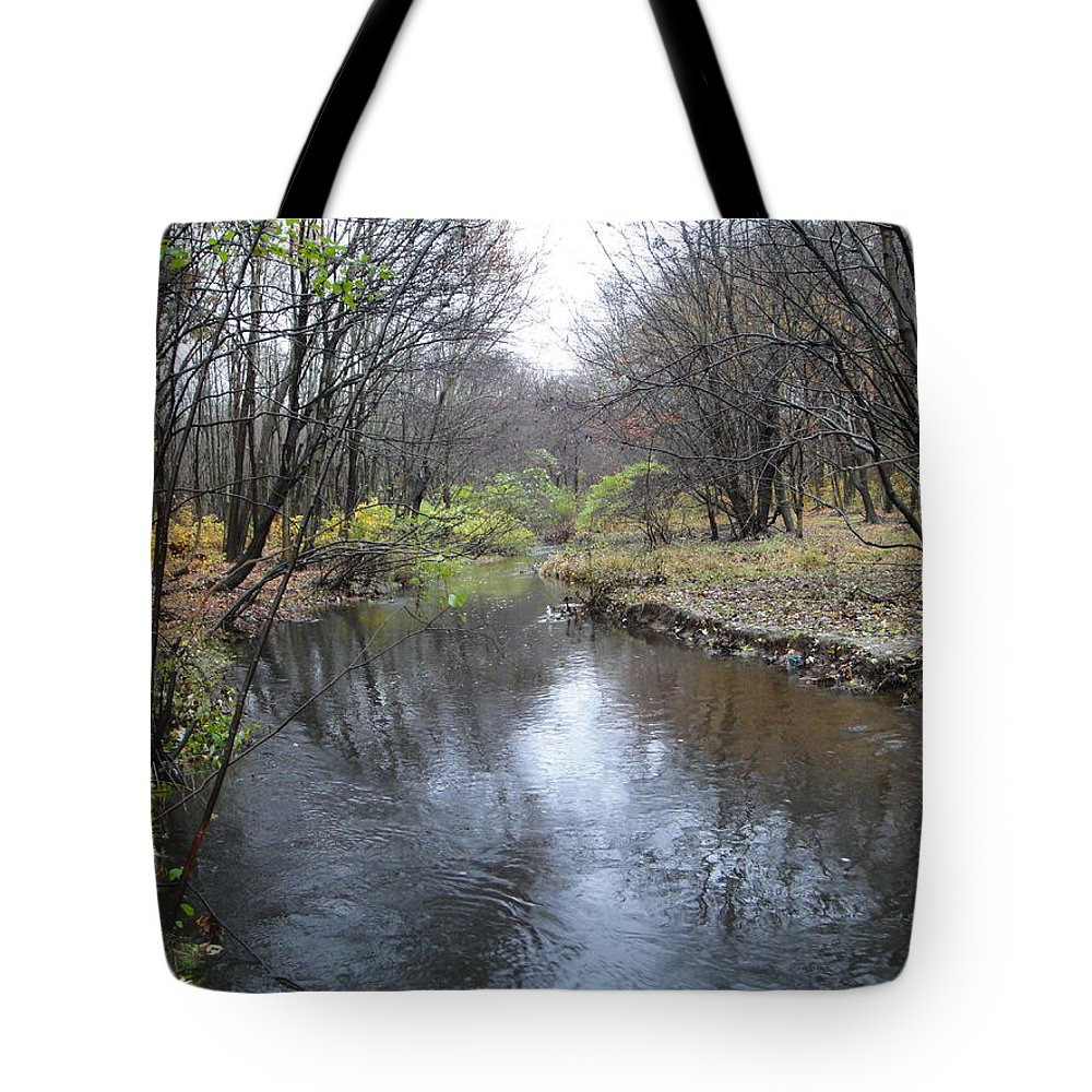 Autumn Landscape Tote Bag featuring the photograph Nature by Leonard Holland