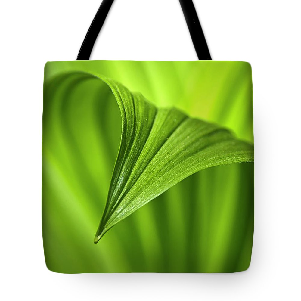 Nature Tote Bag featuring the photograph Nature Unfurls by Christina Rollo