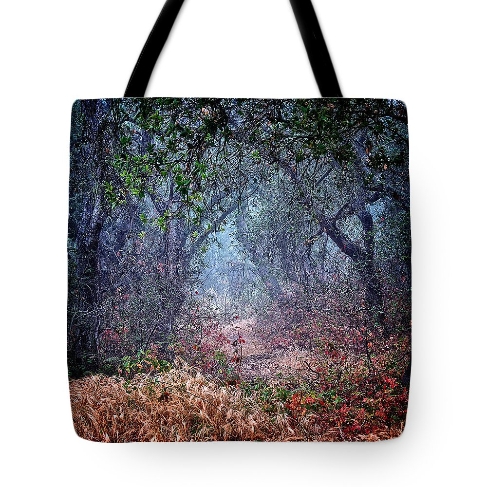Nature Tote Bag featuring the photograph Nature's Chaos, Arroyo Grande, California by Zayne Diamond Photographic