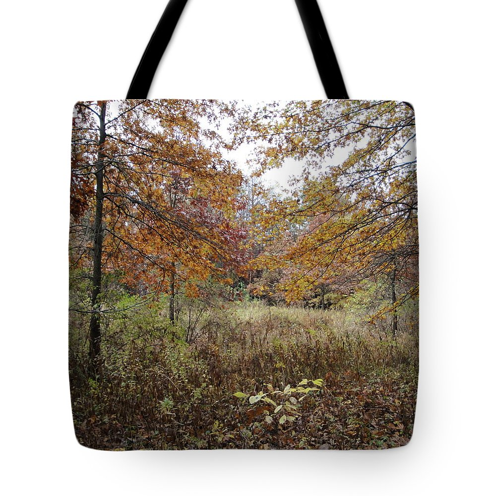 Autumn Landscape Tote Bag featuring the photograph Nature's Expression-10 by Leonard Holland