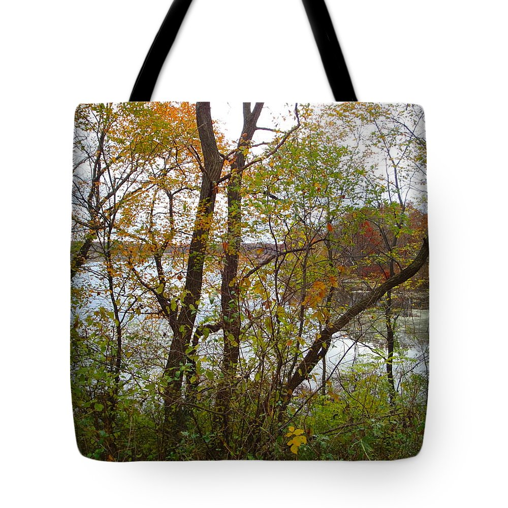 Autumn Landscape Tote Bag featuring the photograph Nature's Expression-11 by Leonard Holland