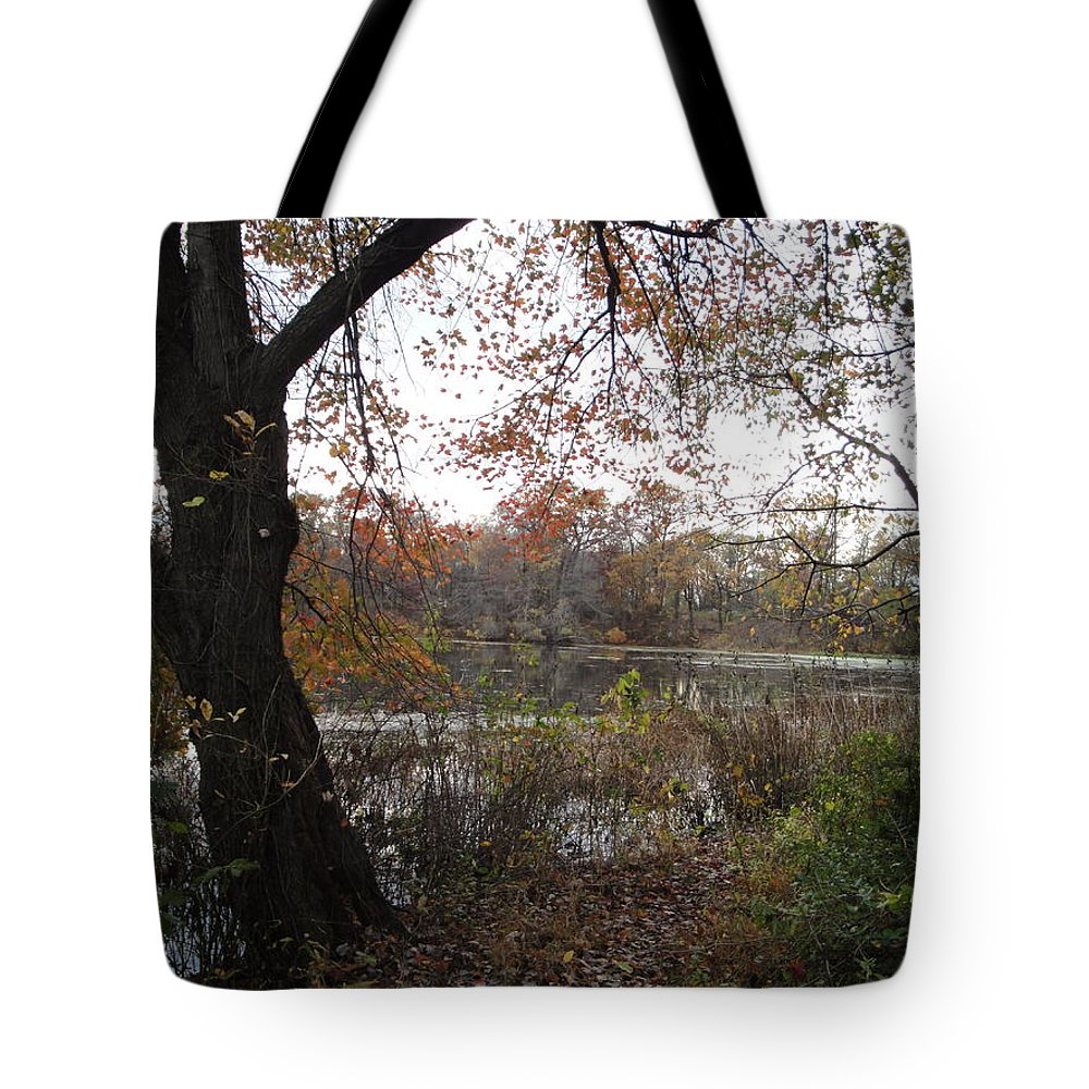Autumn Landscape Tote Bag featuring the photograph Nature's Expression-13 by Leonard Holland