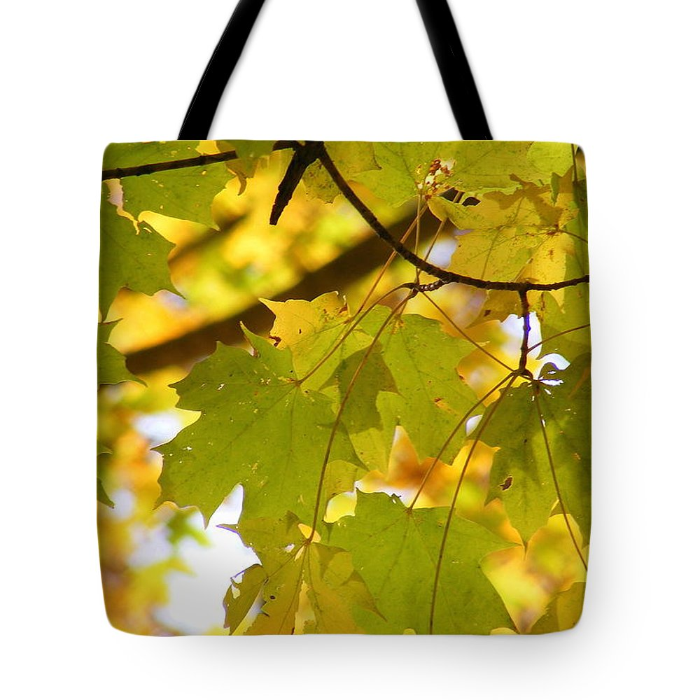 Leaves Tote Bag featuring the photograph Natures Glow by Ed Smith