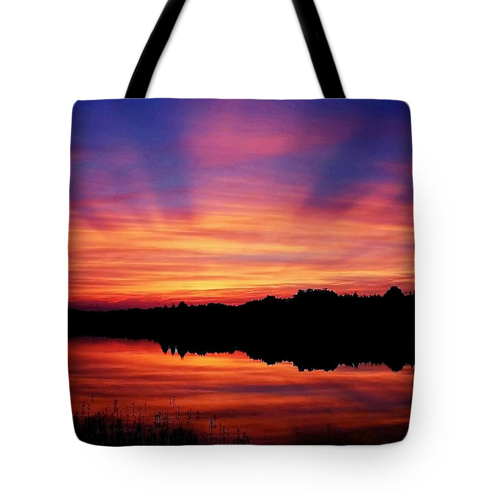 Landscape Tote Bag featuring the photograph Nature's Invention by Mitch Cat
