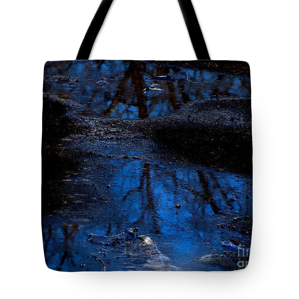 Blue Tote Bag featuring the photograph Natures Looking Glass by September Stone