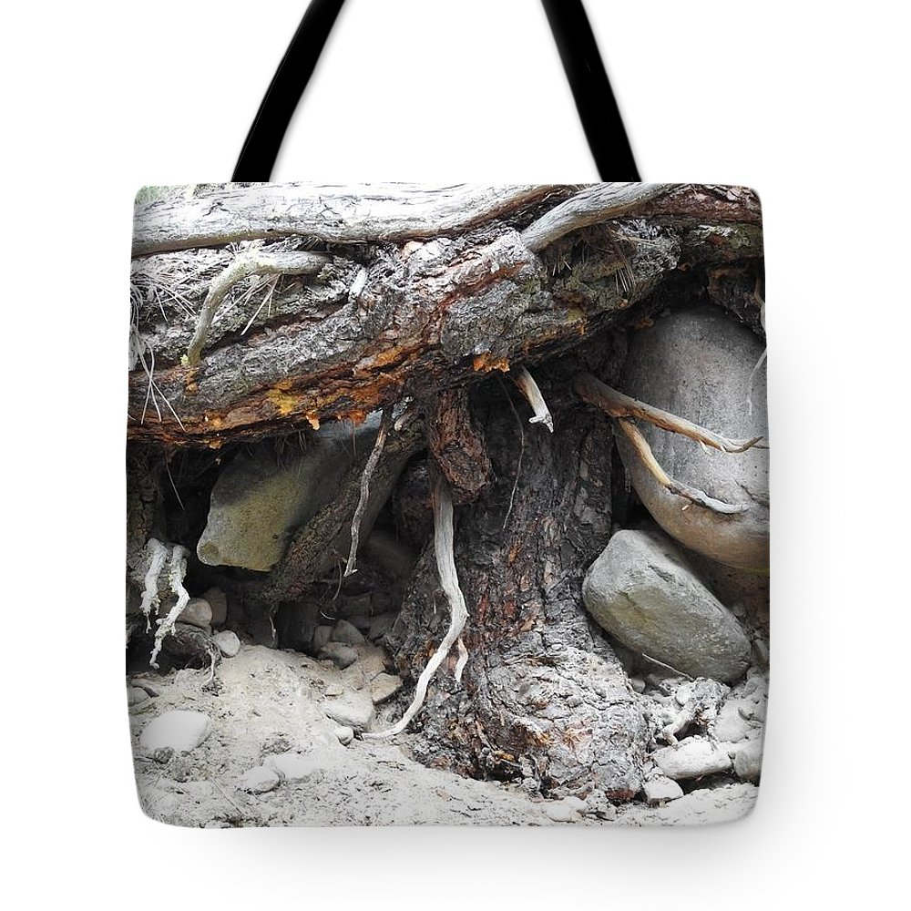 Tote Bag featuring the photograph Nature's Roots by Dan Hassett