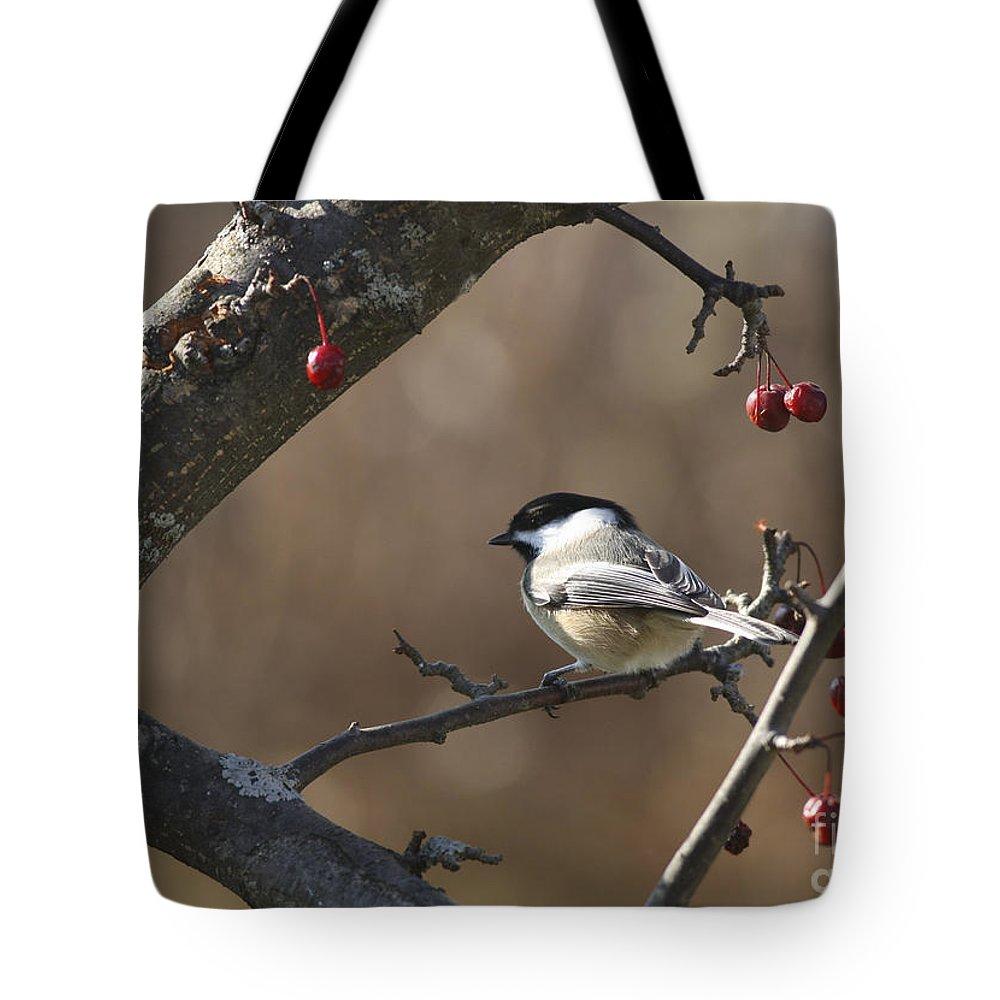 Bird Tote Bag featuring the photograph Natures Small Wonders by Deborah Benoit
