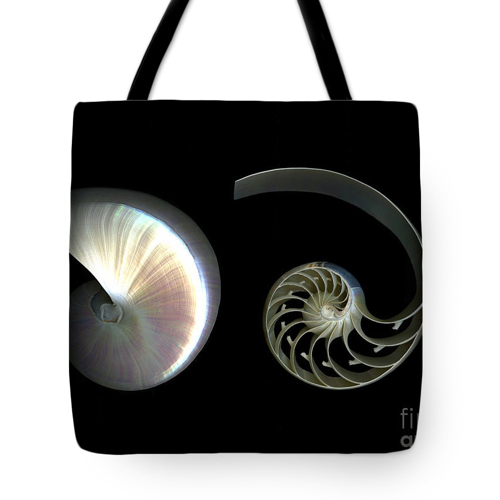 Nautilus Tote Bag featuring the photograph Nautilus Deconstructed by Christian Slanec