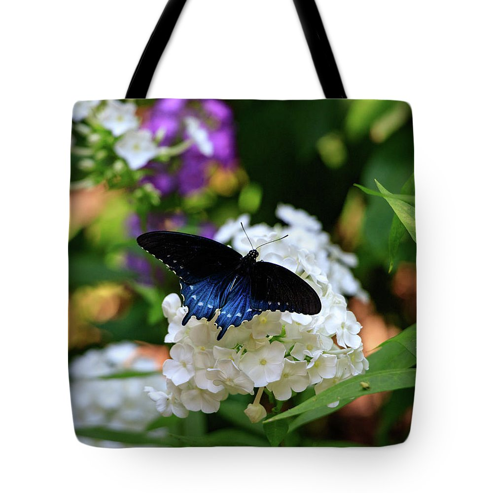 Butterfly Tote Bag featuring the photograph Nc Arboretum Butterflies 2 by Matt Sexton