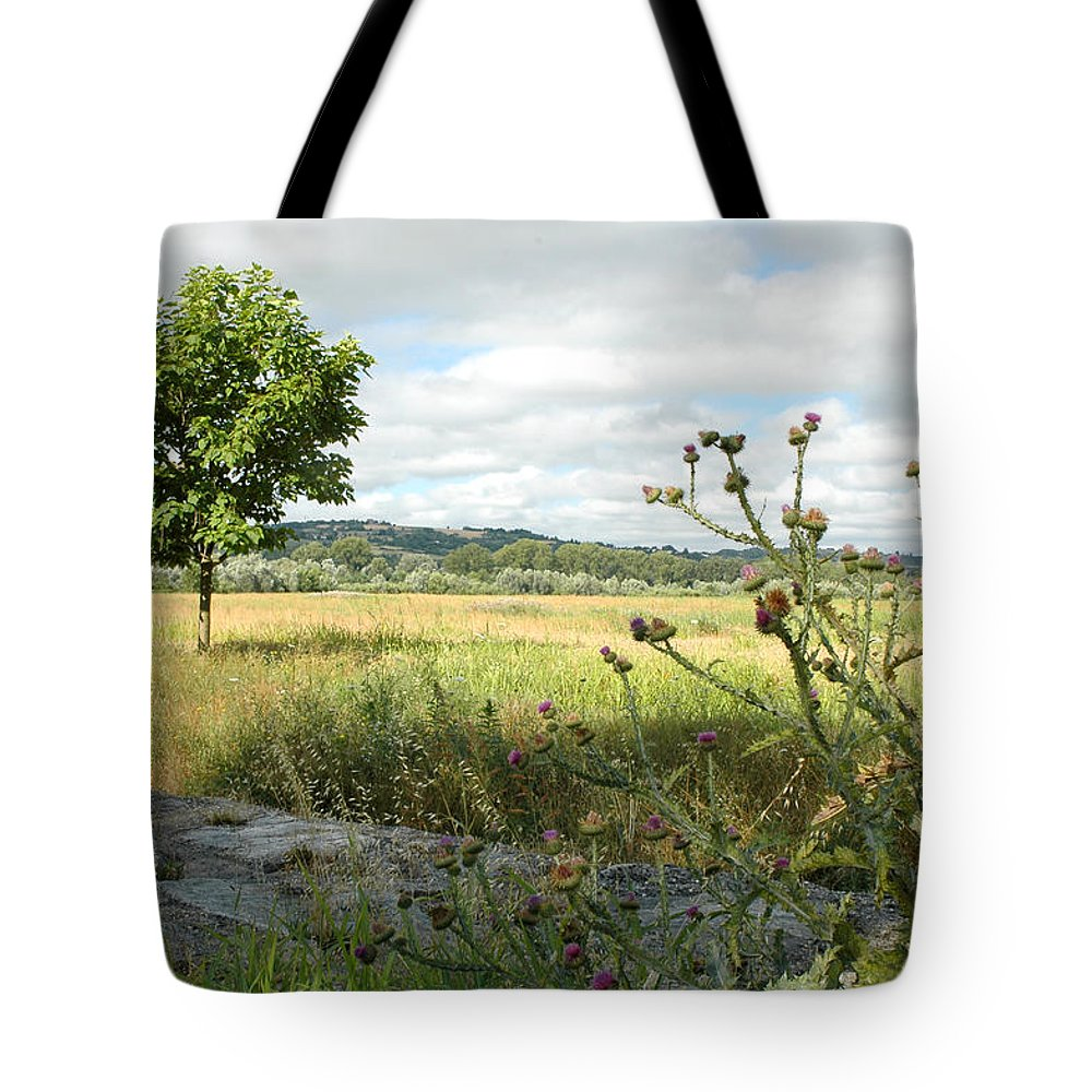 Landscape Tote Bag featuring the photograph Nearby Savannah by Guido Strambio