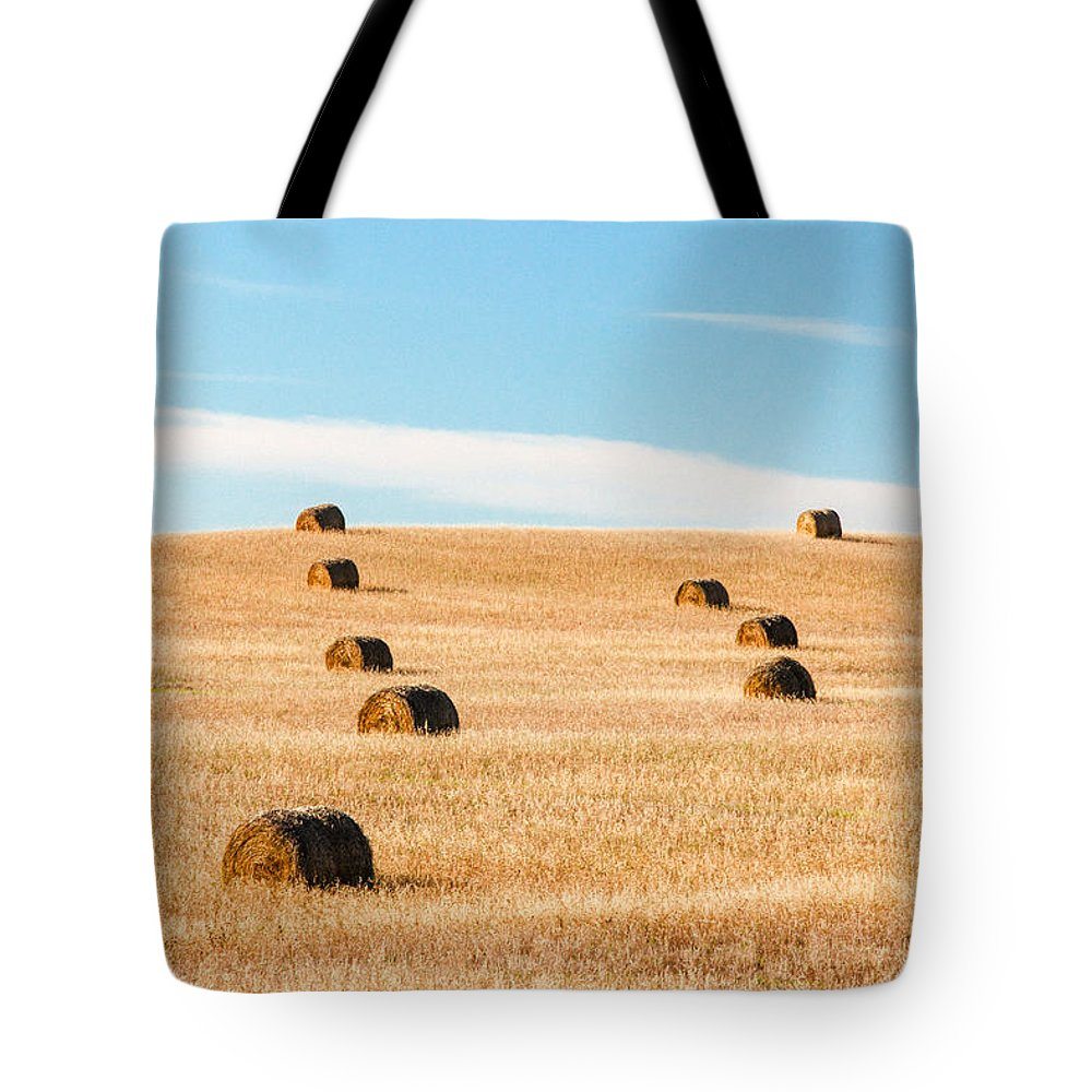 Field Tote Bag featuring the photograph Nearly Covered by Todd Klassy