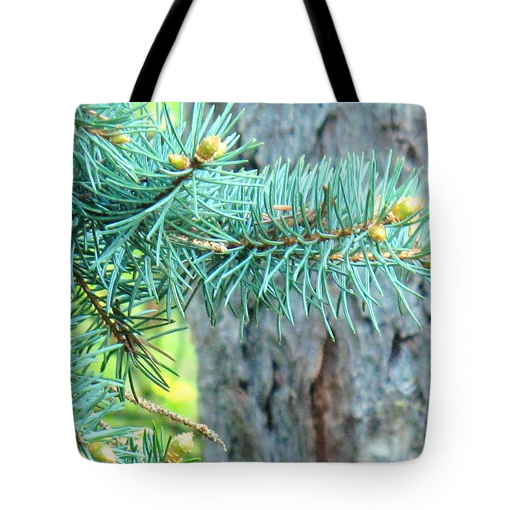 Pine Tote Bag featuring the photograph Needles by Ian MacDonald