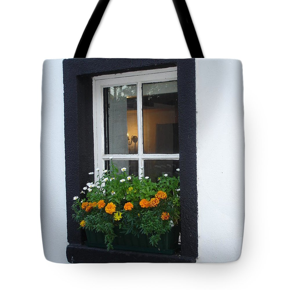 Window Tote Bag featuring the photograph Neighbor by Kelly Mezzapelle