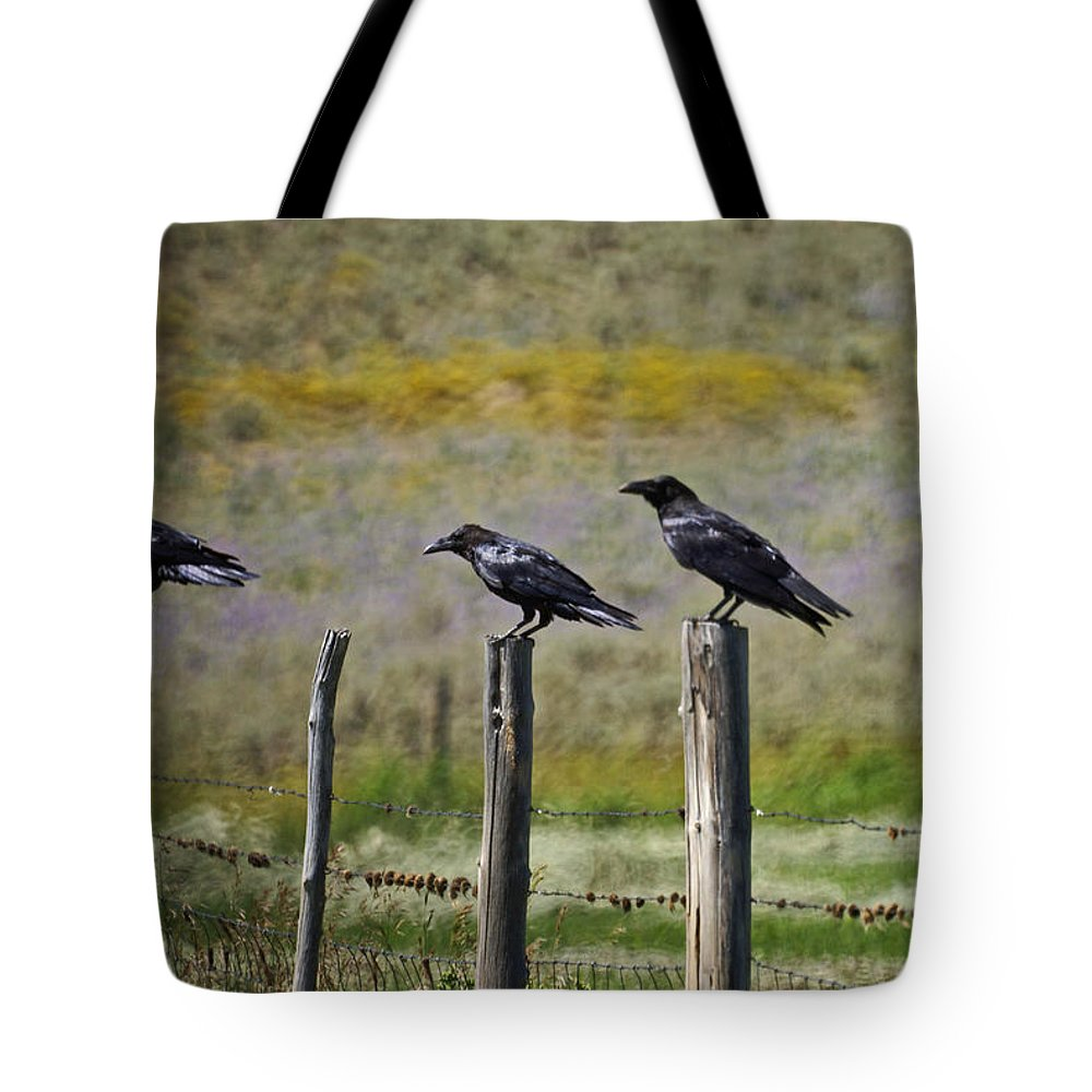 Crows Tote Bag featuring the photograph Neighborhood Watch Crows by Heather Coen