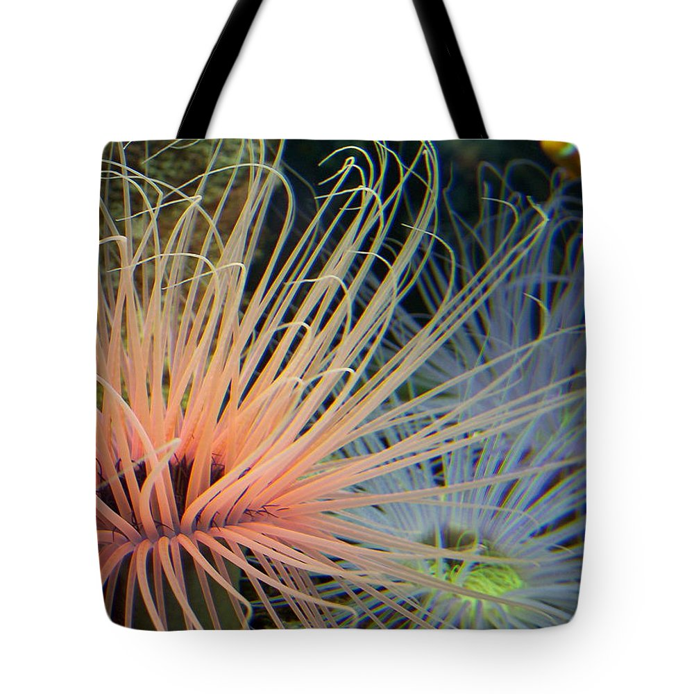 Nature Tote Bag featuring the photograph Nemo by Kimberly Mohlenhoff
